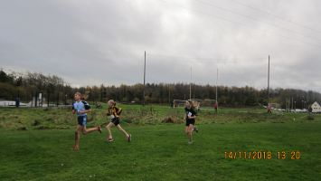 Halloween-2018-and-cross-country-040